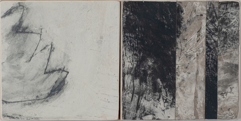 Black + White Series